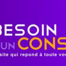 Lancement officiel de Besoindunconseil.com !!!
