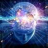 Vidéo : Les facteurs clés qui modifient vos pensées et vos résultats !