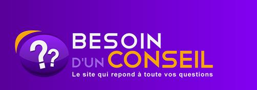 lancement officiel de besoindunconseil com