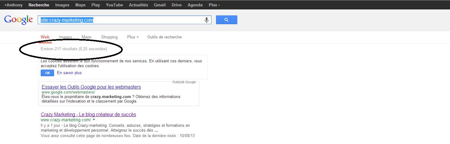 comment savoir si google a indexer mon site